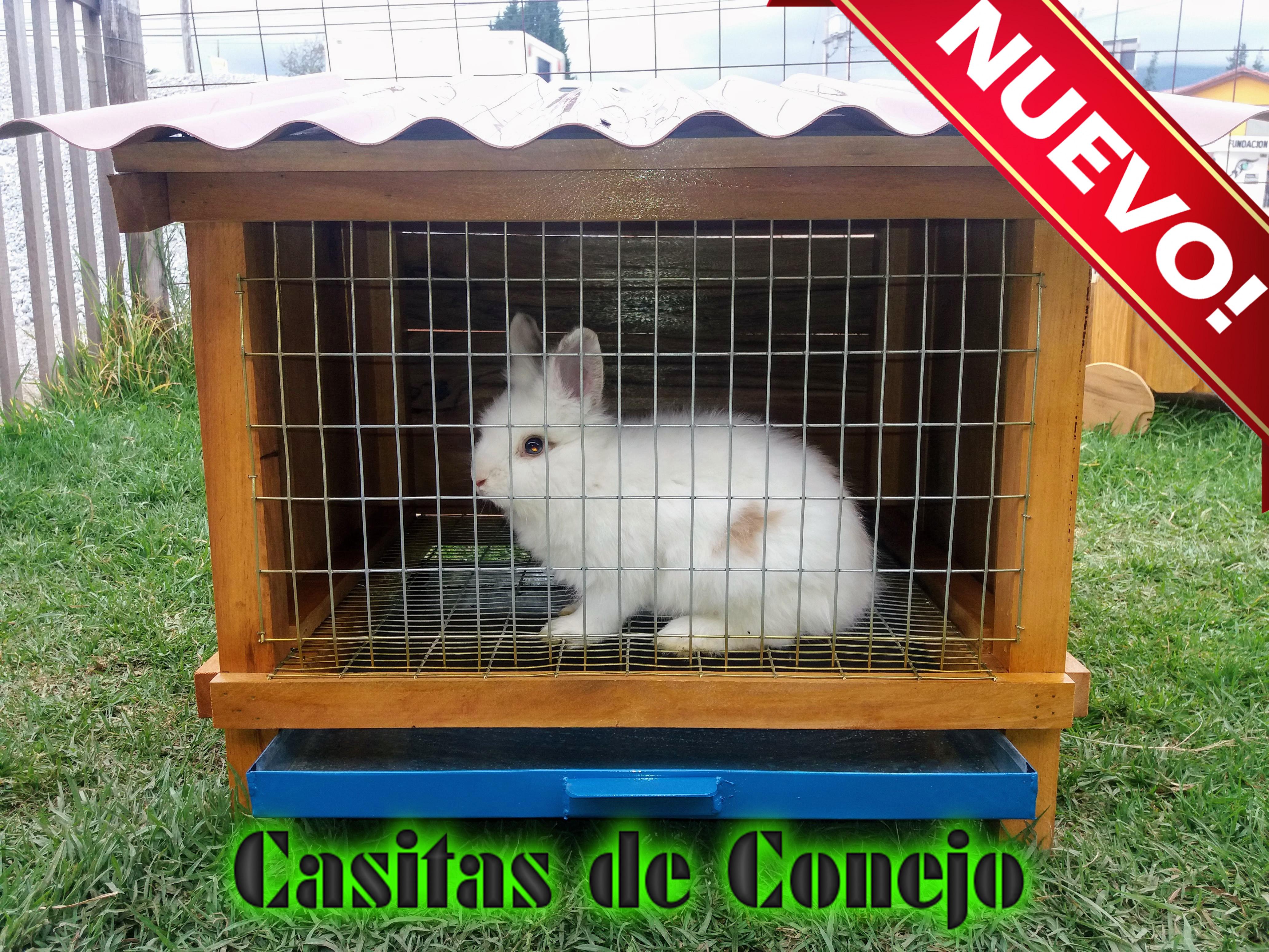 Casitas de conejo jaulas ayenla - Casa conejo ...